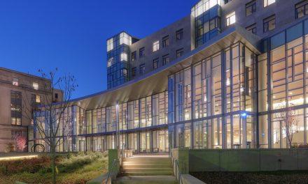 MIT Sloan seleciona startups brasileiras C6 Bank e Gocase para desenvolver projetos de inovação e empreendedorismo