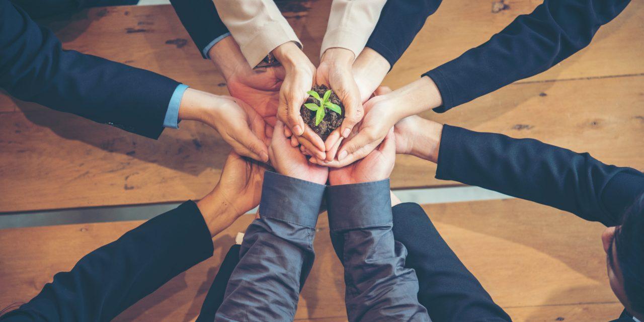 Compras públicas: empresas sustentáveis têm mais chances de vencer licitações