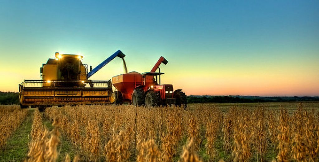 De grão em grão, o campo enche o PIB e preserva o ambiente