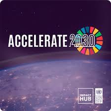 Brazil Accelerate 2030 divulga 35 empresas finalistas do programa