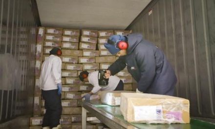 São Paulo envia o primeiro lote de frango in natura para China após negociação do escritório do Governo do Estado em Xangai