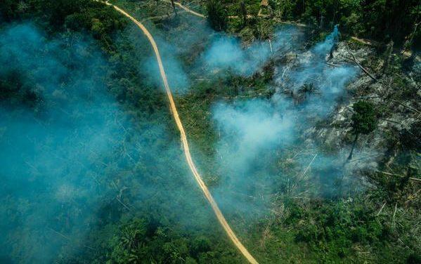 Aumento do desmatamento e grilagem ameaçam indígenas isolados na TI Ituna-Itatá em meio a pandemia