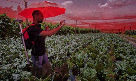 Governo Federal investe R$ 220 milhões para suprir agricultores familiares e atender famílias em vulnerabilidade