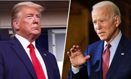 Trump vs. Biden: Relatório da Amcham detalha o impacto das eleições americanas no Brasil