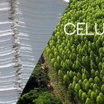 IFC e IDB Invest colideram financiamento de US$1.1 bilhão para LD Celulose para promover o crescimento do setor de celulose no Brasil e fortalecer sua competitividade