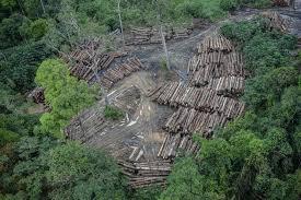 França se opõe ao acordo com Mercosul por causa do desmatamento