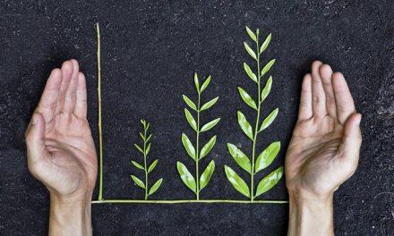 Crescimento sustentável na agenda de prioridades das empresas em 2021