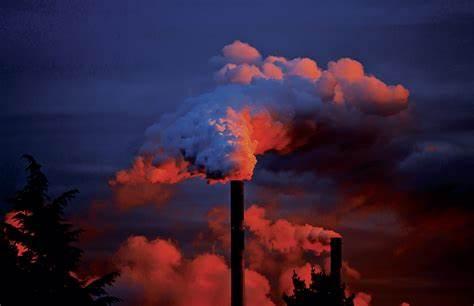 Precificação de carbono no mercado: quais os benefícios?