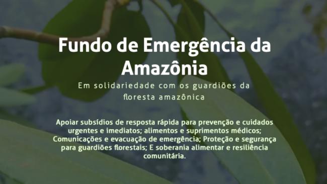 Atos em Defesa da Amazônia alertam para acordo a portas fechadas entre governos Biden e Bolsonaro