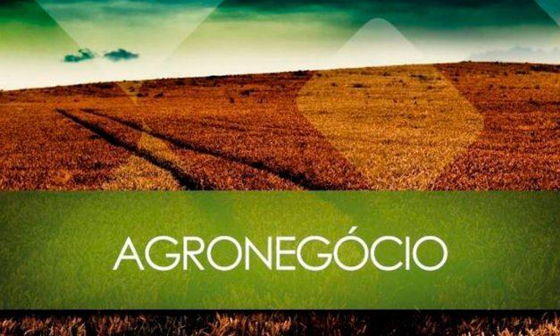 Desafios e oportunidades do agro brasileiro
